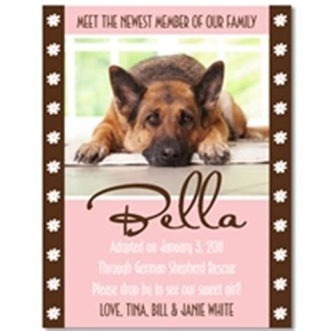 Personalized New Puppy Announcements  Best Friends Studios. Toy Story Poster. Post Graduate Basketball Prep Schools. High School Football Posters. Ms Word Resume Template. Printable Raffle Ticket Template. Pill Bottle Label Template. Student Council Secretary Poster Ideas. Instagram Cut Out Template
