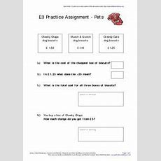 E3 Practice Assessment  Pets Worksheet For 3rd Grade