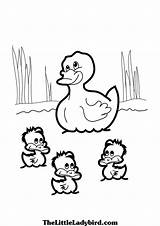 Duck Ducks Baby Colouring Pond Coloring Pages Clipart Drawing Theme Mommy Printable Popsicle Getdrawings Stick Crafts Forward sketch template