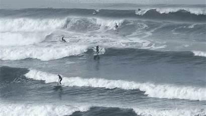 Surf Surfing Swell San Diego