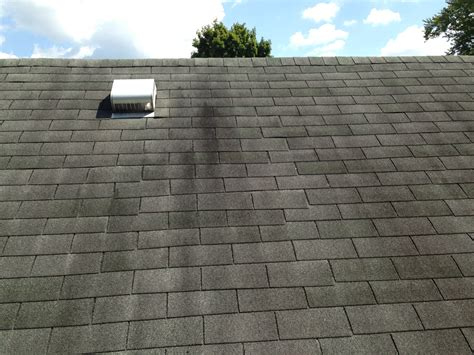leaking roof vent roof vents leaking home design