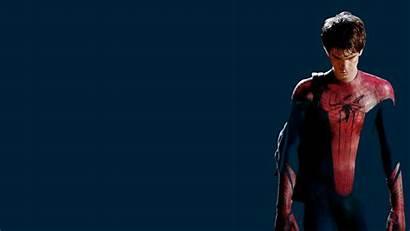 Spider Spiderman Garfield Andrew Wallpoper