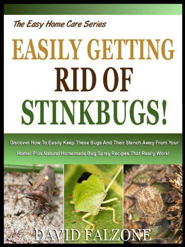 how to keep bugs away from patio 294 best images about bug on the bug