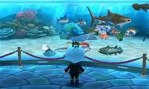 Information About Freshwater Aquarium Wallpaper Gif Yousenseinfo