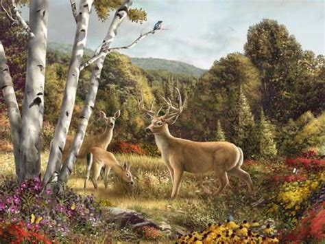 76 best art animals deer images on pinterest deer animal paintings and animal pictures