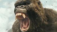 Kong: Skull Island (2017)   Fandango