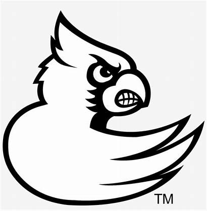 Cardinals Louisville Coloring Pages Pngkey