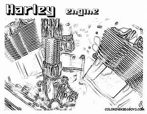 Harley Davidson 883 Engine Diagrams