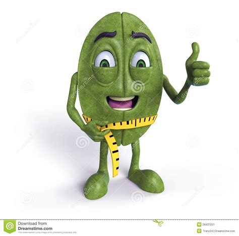 Green Coffee Bean With Tape Measure Stock Image   Image: 28437551
