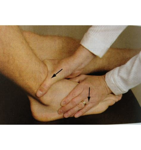 anterior drawer test ankle ankle physical therapy pther 538 with judy at