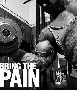 Universal Nutrition Animal Fury at Bodybuilding.com - Best ...