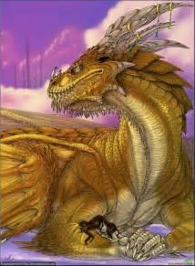 Protecting Dragons and Princess