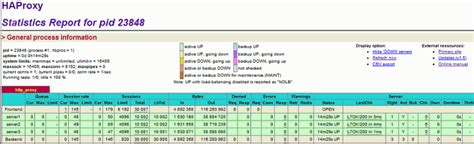 siege web test siege benchmark 2 centminmod com lemp nginx web stack