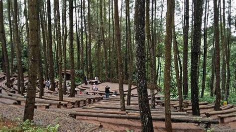 lokasi  rute jalan menuju hutan pinus mangunan