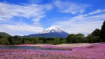 Yamanashi : 10 Best Things to Do in 2019 – Japan Travel ...