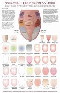 Tongue Chart Ayurveda Tongue Chart Ayurveda Ayurvedic Healing Tongue Health