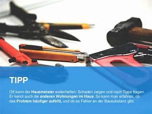 Siemens E14 3f : schimmelentferner stiftung warentest schimmelentferner ~ Michelbontemps.com Haus und Dekorationen