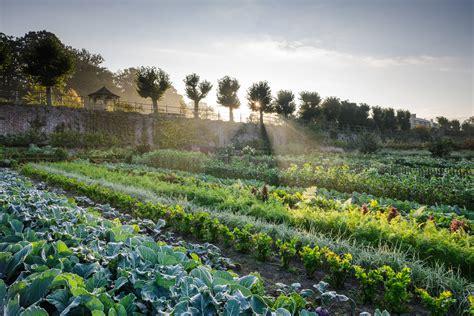 kasteel hex kitchen garden jason ingram bristol