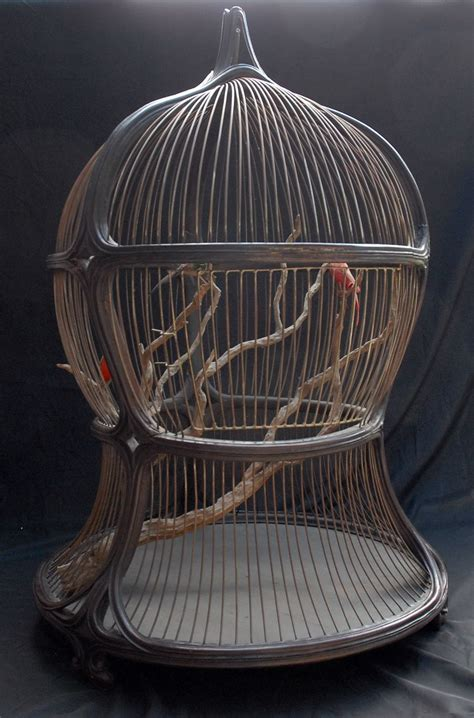 Decorative Birds - antique decorative bird cage i wouldn t want to