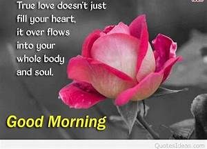 quotes love good morning