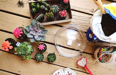 แบ่งปันไอเดีย DIY 'สวนแคคตัสในโหลแก้ว' จัดสวนเล็กๆ สุดชิค ...