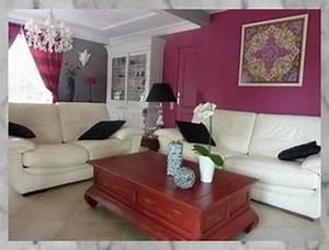 Salon Gris Et Rose : deco salon rose et gris ~ Preciouscoupons.com Idées de Décoration