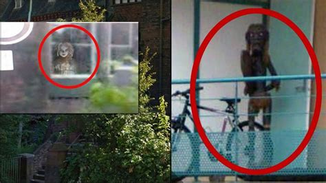 top  mysterious creatures caught  google maps