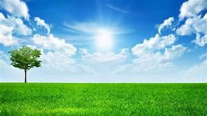 Sunny Sky Wallpaper