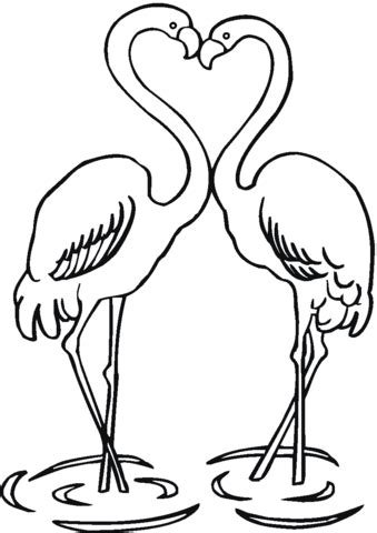 Couple Of Flamingo coloring page from Flamingos category
