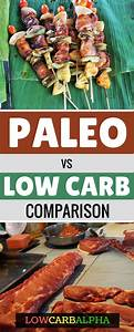 Paleo Vs  Low Carb Which Diet Is Right For You