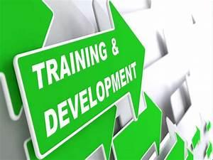 Training  U0026 Development Ppt