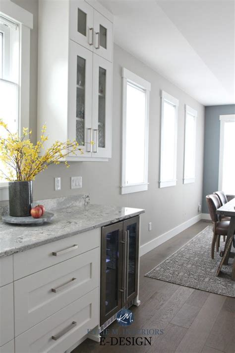 paint colour review sherwin williams colonnade gray