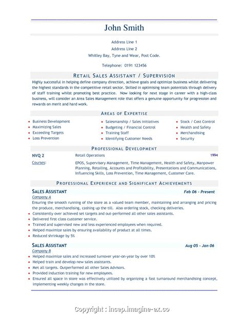 Resume For Retail by Top Retail Assistant Resume Retail Sales Assistant Resume
