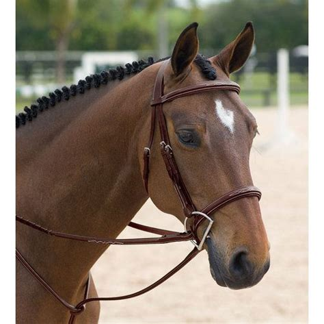 bridle hunter horse classic horses bridles tack dy dyon parts things related bit equestrian