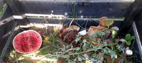 was darf auf den kompost richtig kompostieren was darf auf den kompost und was nicht hilfefuchs de