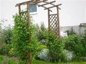 Pergola Holz Obi : zeigt her eure rosenb gen mein sch ner garten forum ~ Yasmunasinghe.com Haus und Dekorationen