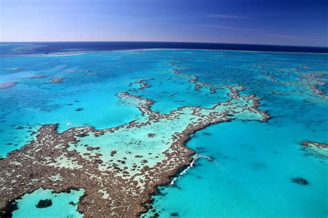 Snapshot Monday ~ Great Barrier Reef - Marie Hernandez - Seriously Travel