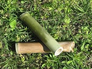 Objet Bambou Faire Soi Meme : bambou autonomie autarcie survie tout faire soi m me ~ Melissatoandfro.com Idées de Décoration