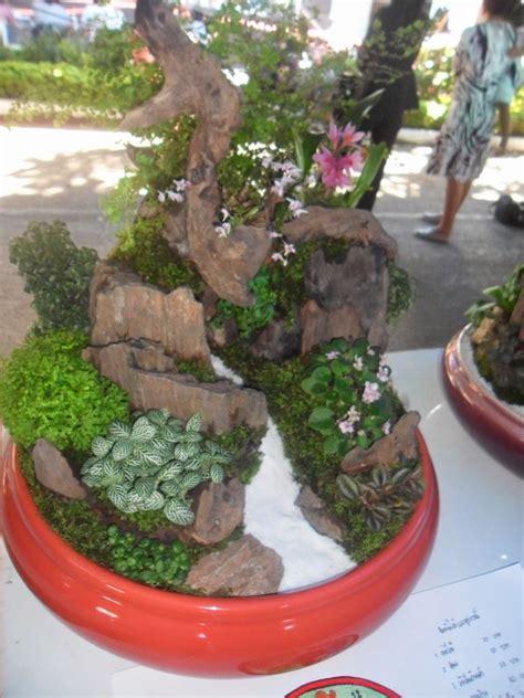 รับจัดสวนในภาชนะ: ภาพตัวอย่างสวนถาดแบบชื้น