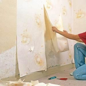 Reboucher Grosse Fissure Mur Exterieur : comment reboucher les fissures sur votre mur bricobistro ~ Louise-bijoux.com Idées de Décoration