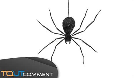 comment faire des toile d araignee pour draw a spider comment dessiner une araign 233 e
