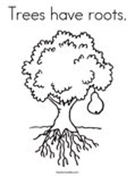 Tree Trunk And Roots Template by Trees Have Roots Coloring Page Twisty Noodle