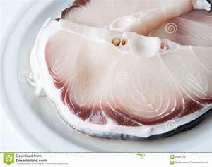 Raw shark fillet stock image. Image of piece, seafood ...