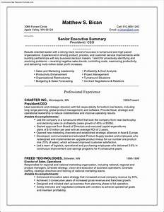 ceo resume template free samples examples format With ceo resume template