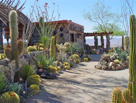 mojave rock ranch reinvents  desert garden garden design