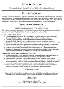 Executive Summary On A Resume by How To Write A Executive Summary Resume Writing Resume Sle Writing Resume Sle