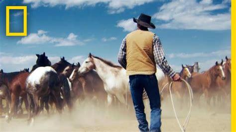 horses wild montana mountains wrangling short film