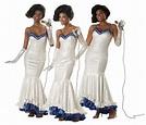 Elegant Dreamgirls Movie Adult Halloween Costume | eBay