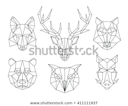boar logo stock  images pictures shutterstock
