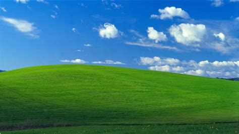 Iconic Windows Xp Background Is Photo Of Sonoma County